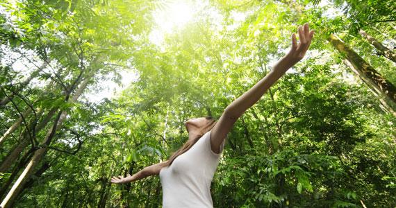 Folge deiner Intuition – insbesondere wenn du krank oder verletzt bist